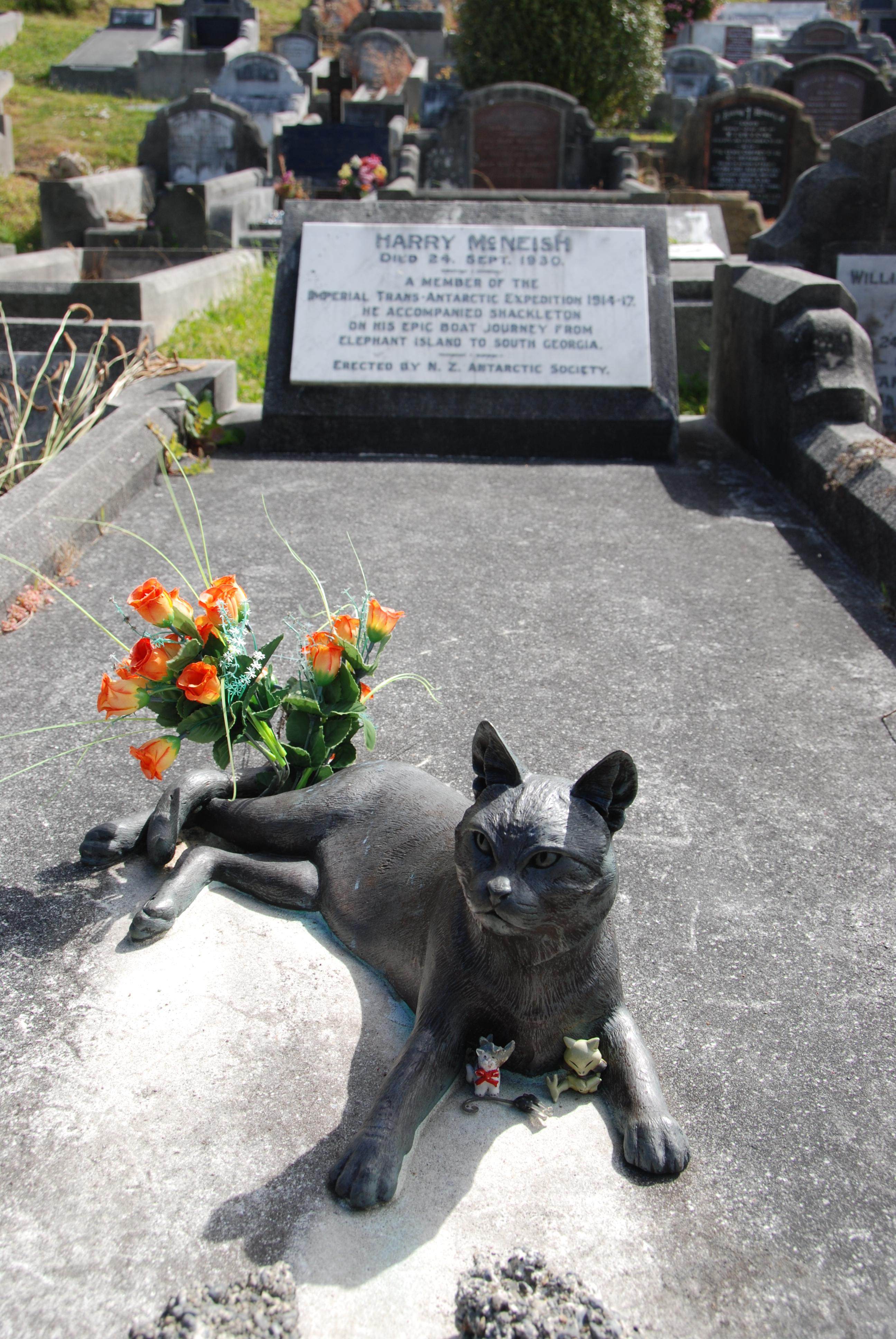 Gravestone of Harry McNeish in Karori Cemetary with Mrs Chippy